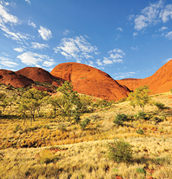 Branch-Images_alicesprings.png
